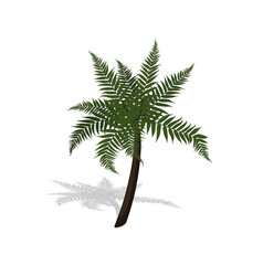 Plant in isometric style cartoon tropical tree vector