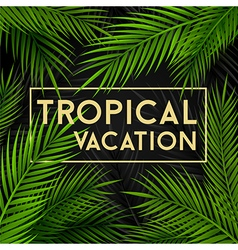 Tropical vacation card with palm leaves vector