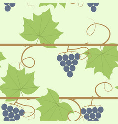 grape berry leaf pattern vector image vector image