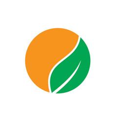 circle orange leaf nature logo vector image