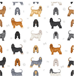 Afghan hound all colours seamless pattern vector
