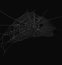 Cobweb decorative element spiderweb vector