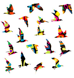 colorful silhouettes birds flying vector image