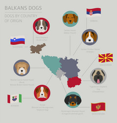 Dogs country origin balkans dog breeds vector