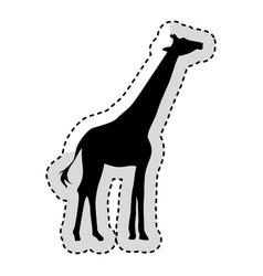 Giraffe animal isolated icon vector