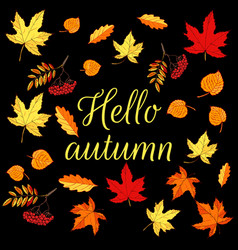 hello autumn card with colored autumn leaves vector image