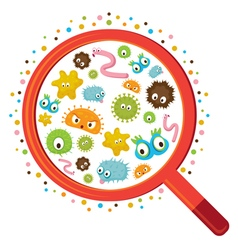 Magnifying Glass look through Germ vector