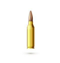 realistic machine gun bullet sniper rifle vector image