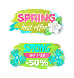 spring big sale 50 percents and best offer vector image