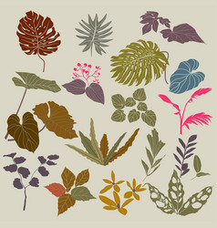 Tropical collection with exotic flowers and leaves vector