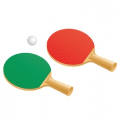 table tennis paddles and balls vector image
