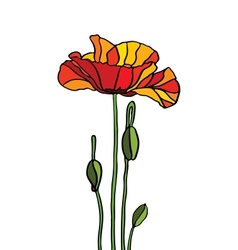 Poppy stained glass vector image