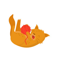 fluffy red cat playing with ball of woolen threads vector image