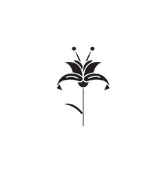 lily black concept icon lily flat vector image