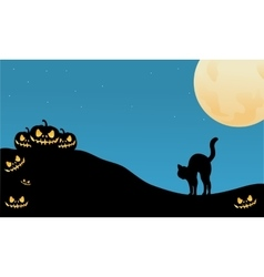 Pumpkin and cat halloween silhouette vector