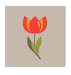 tulip flower icon vector image