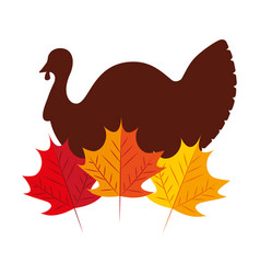 turkey bird with autumn leaves natural vector image