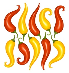 hot chilli pepper set isolated on white vector image