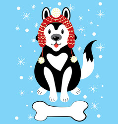 christmas of a dog in a hat and with vector image