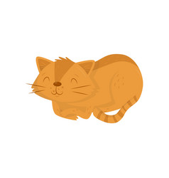 Cute red cat lying on floor kitten with happy vector