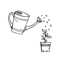 Doodle with a watering can watering a flower vector