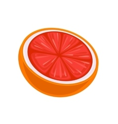 Juicy Grapefruit isolated on white vector image
