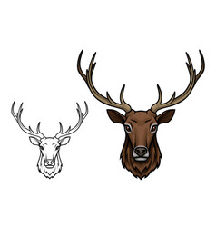 Deer antlers muzzle isolated sketch icon vector