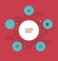 flat icons swine kine chimpanzee and other vector image vector image