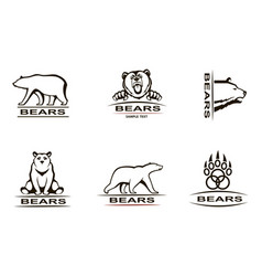 bear emblem set vector image vector image