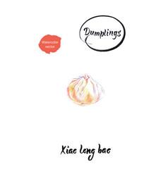 asian dumpling xiao long bao watercolor vector image
