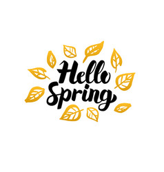 hello spring gold greeting card vector image