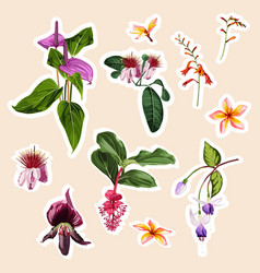 set of stickers pins patches of tropical flowers vector image