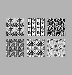 Tropical exotic plants seamless patterns set vector