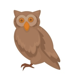 owl character isolated on white vector image vector image
