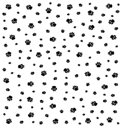 trace of dogs vector image vector image