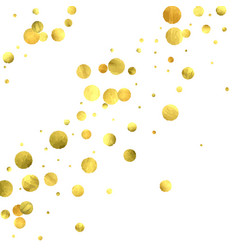 golden circles isolated on white vector image