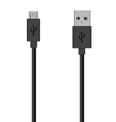 Cord cable vecotr vector image