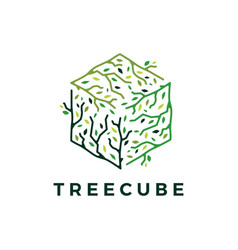 cube cubical tree branch leaf logo icon vector image
