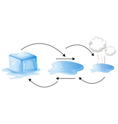 diagram showing how water changes forms vector image