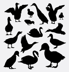 Duck goose and swan animal silhouettes vector