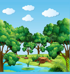 Forest scene with many trees and river vector