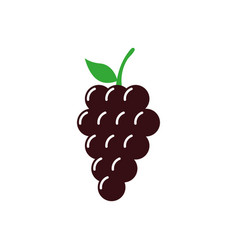 grape icon design template isolated vector image