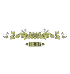 hops branch image vector image