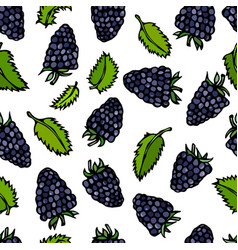 Seamless blackberry and mint leaves doodle style vector