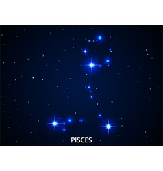 Set of Symbol Zodiac Pisces vector image