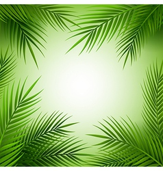 Tropical palm tree frame with copy space vector image