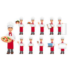 young professional chef set vector image vector image