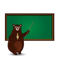 cute cartoon bear teacher in glasses and tie vector image