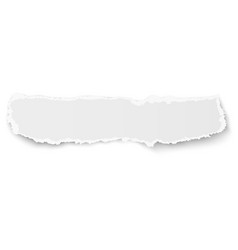 elongate paper fragment with soft shadow isolated vector image