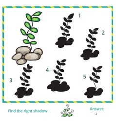 Find the shadow of picture vector image